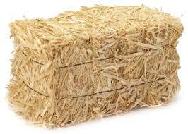 Oat straw bale